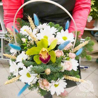 Новогодняя корзина из хризантем и хвои