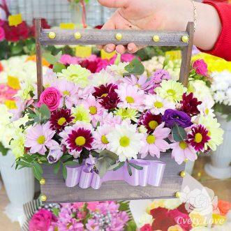 Разноцветные хризантемы в ящике