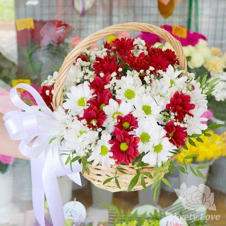 Красные и белые хризантемы в корзине